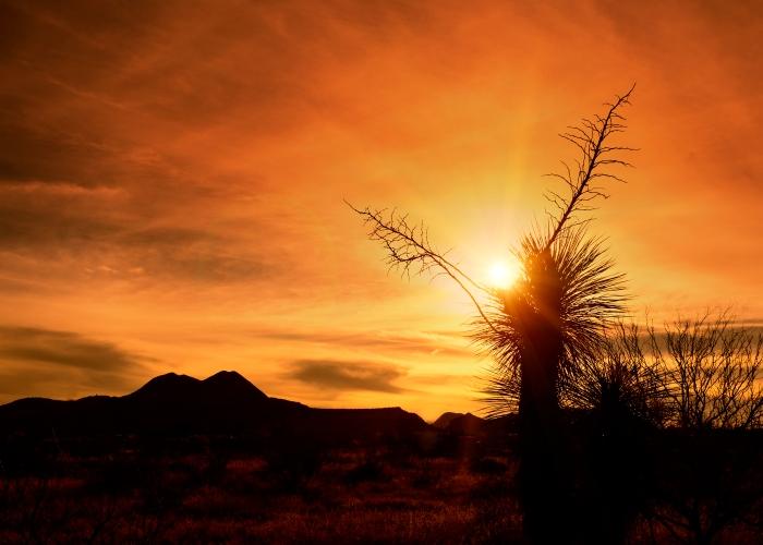 14-01-19 sunset_1482