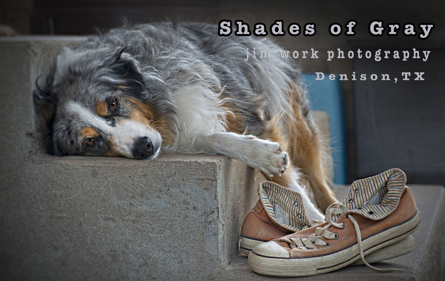 Shades of Gray – Denison TX